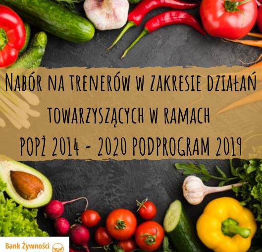 Nabór na trenerów w zakresie działań towarzyszących w ramach POPŻ 2014 - 2020 PODPROGRAM 2019